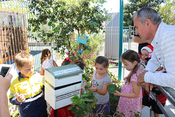 Children from Woodburn Preschool show Clarence MP, Chris Gulaptis their native bee hive