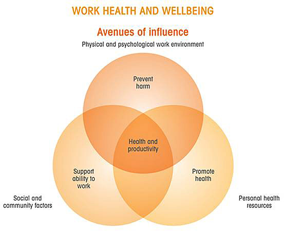 Diagram of the 'Avenues of influence', showing how the physical and psychological work environment interact with social and community factors, and personal health resources to impact work health and wellbeing.