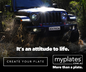 Enhance the look of your car.  More than a plate.
