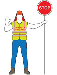 Authorised escort vehicle driver in high-visibility safety clothing holding a red 'stop' sign, standing facing the traffic and raising one hand to indicate to traffic to stop
