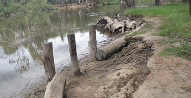 Murray River Erosion Management Plan