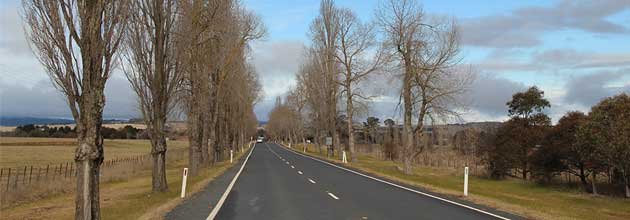 Long, straight stretch of the Kings Highway, showing the trees growing close to the road on both sides, north of Braidwood.