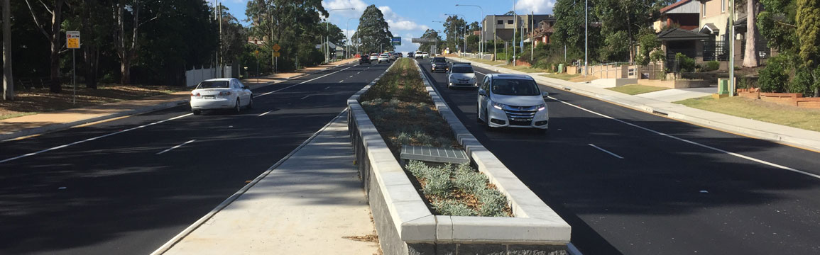 Showground Road northbound vegetation median.