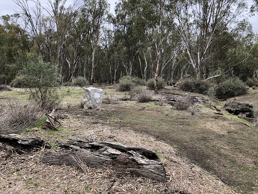 Old red gum sawmill site - June 2019