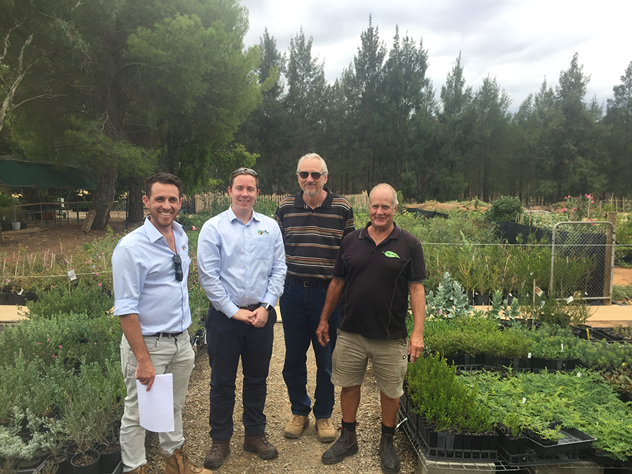 Landscaping begins - RMS and HL Landscapes selecting seedlings at a local nursery