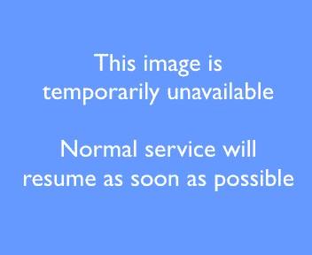 Carlingford Road