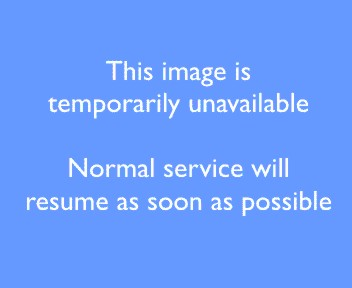 Epping Road, NSW