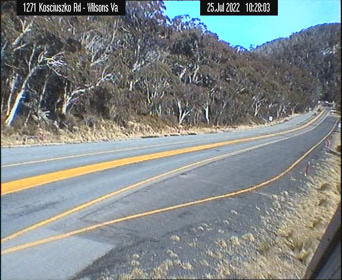 Wilson Valley Road Cam